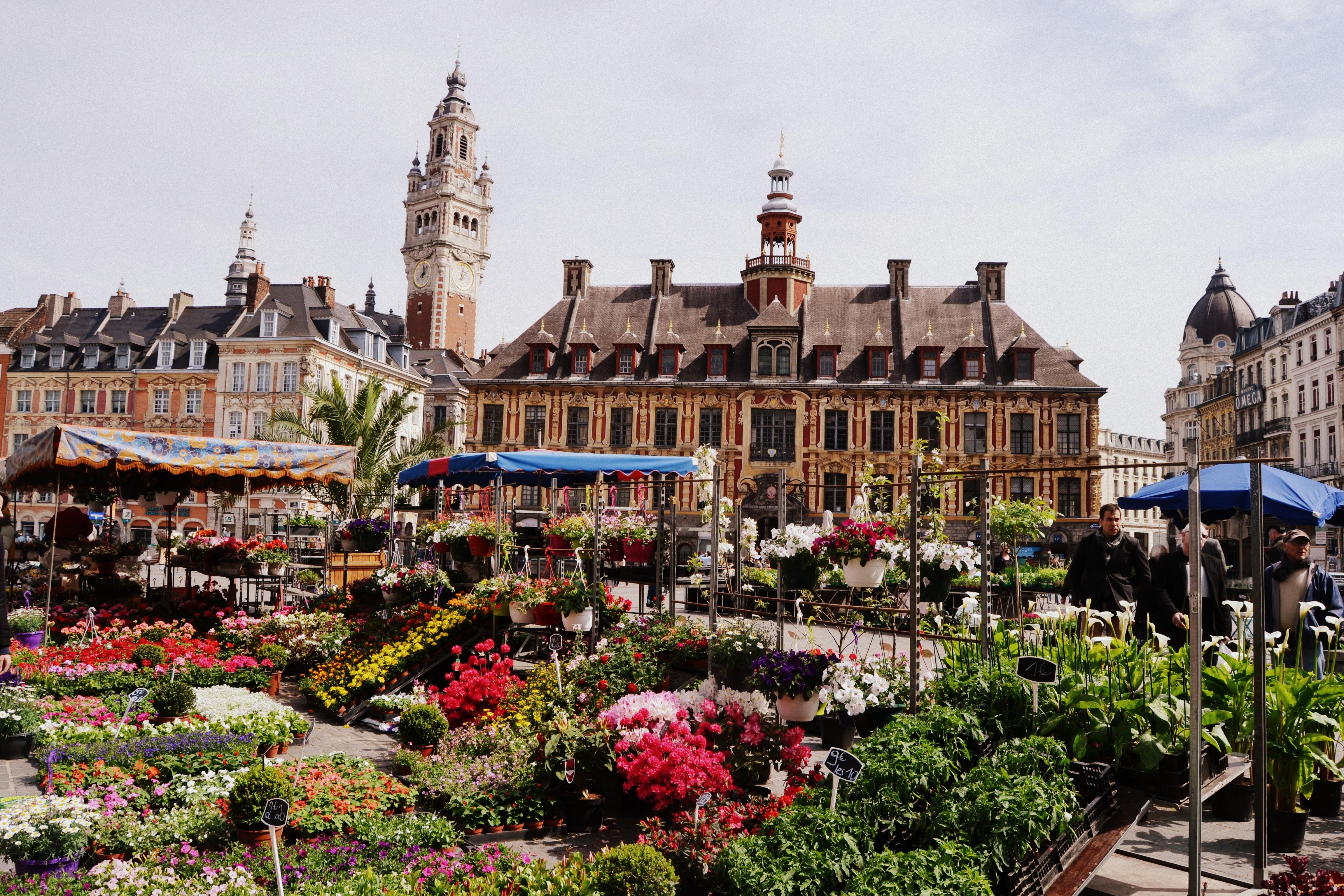 Une journée à Lille