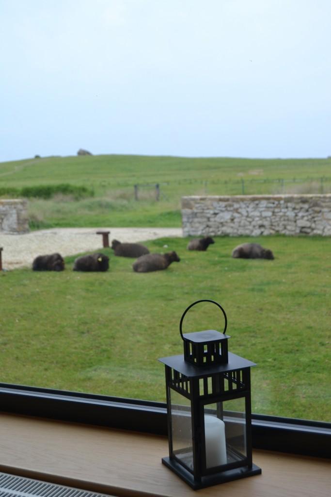 eco hotel restaurant le chateau de sable Porspoder (31)