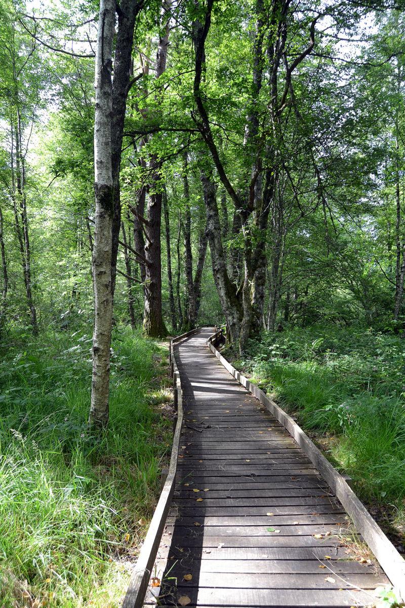 trois jours dans le Parc Régional du Morvan